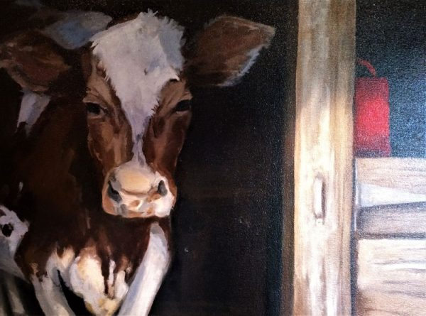 Jeffrey the Cow by Phyllis Tracy